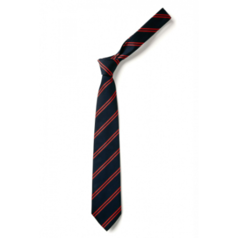 Infant Clip on Tie
