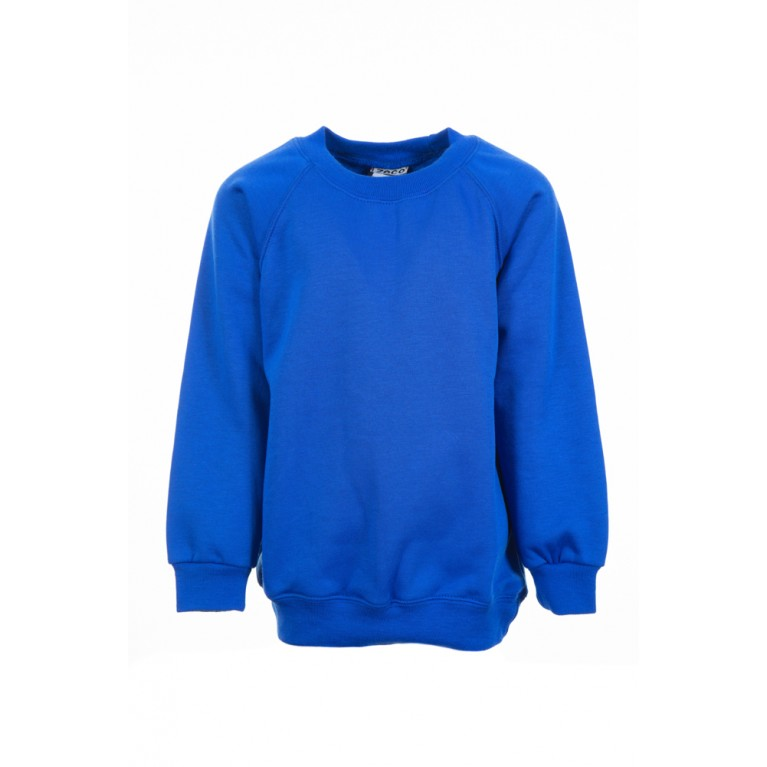 Plain Blue Sweatshirt