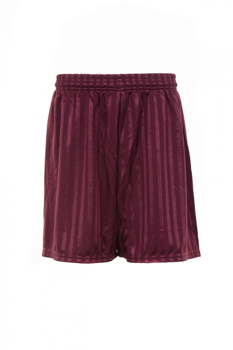 Boys Maroon Shadow Striped Shorts