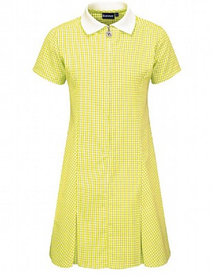 Gold Avon Summer Dress